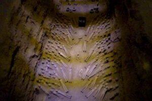 陽陵地下遺跡博物館の副葬品の夥しい陶俑