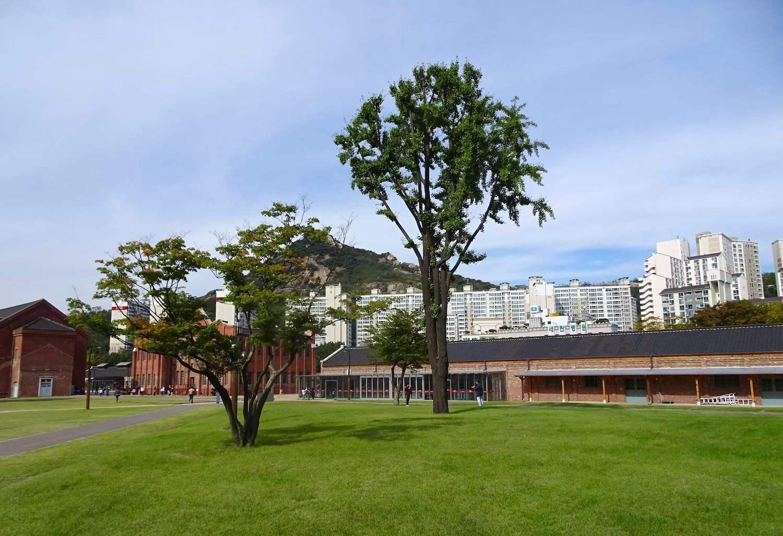 西大門刑務所跡は芝生とレンガ。美しい場内が胸に迫る